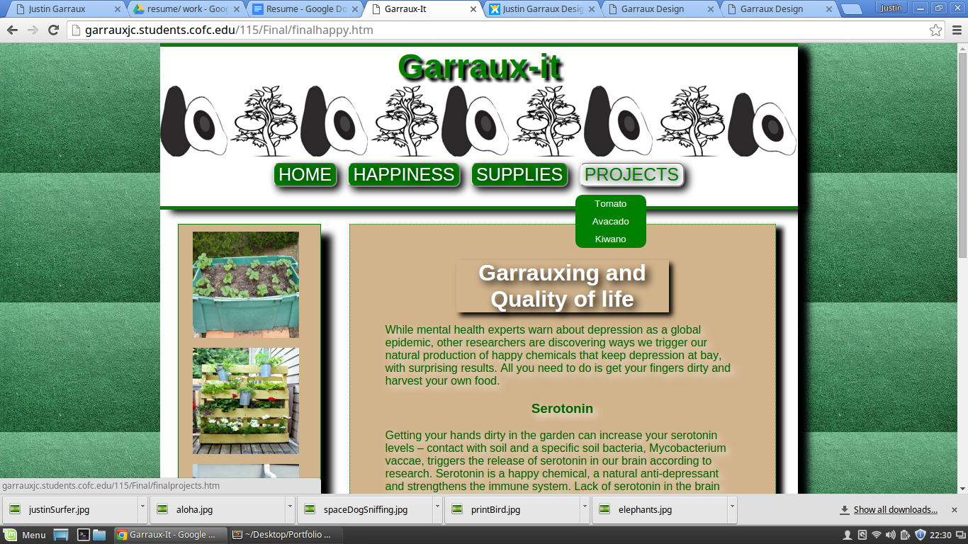 image of garraux it. one of justin garraux first websites made about horticulture. Kiwano african horned melons, tomatoes, avacodos. justingarraux.com, justingarraux, justin garraux