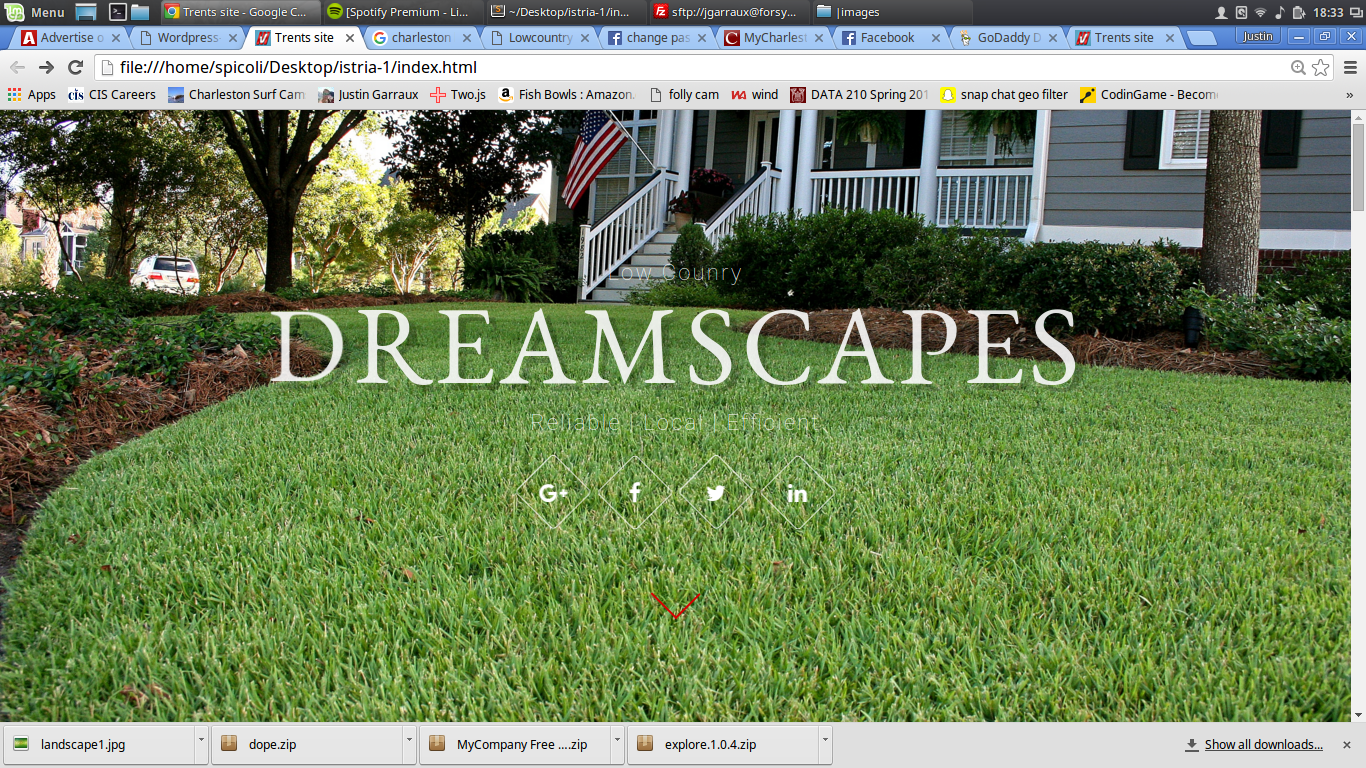 image of a website made by Justin garraux for Trent Mcneil's business, Dreamscapes. It is a Garraux Designs product. the charleston landscaping business opperates in mt pleasant, isle of palms, and downtown charleston. justingarraux.com, justingarraux, justin garraux